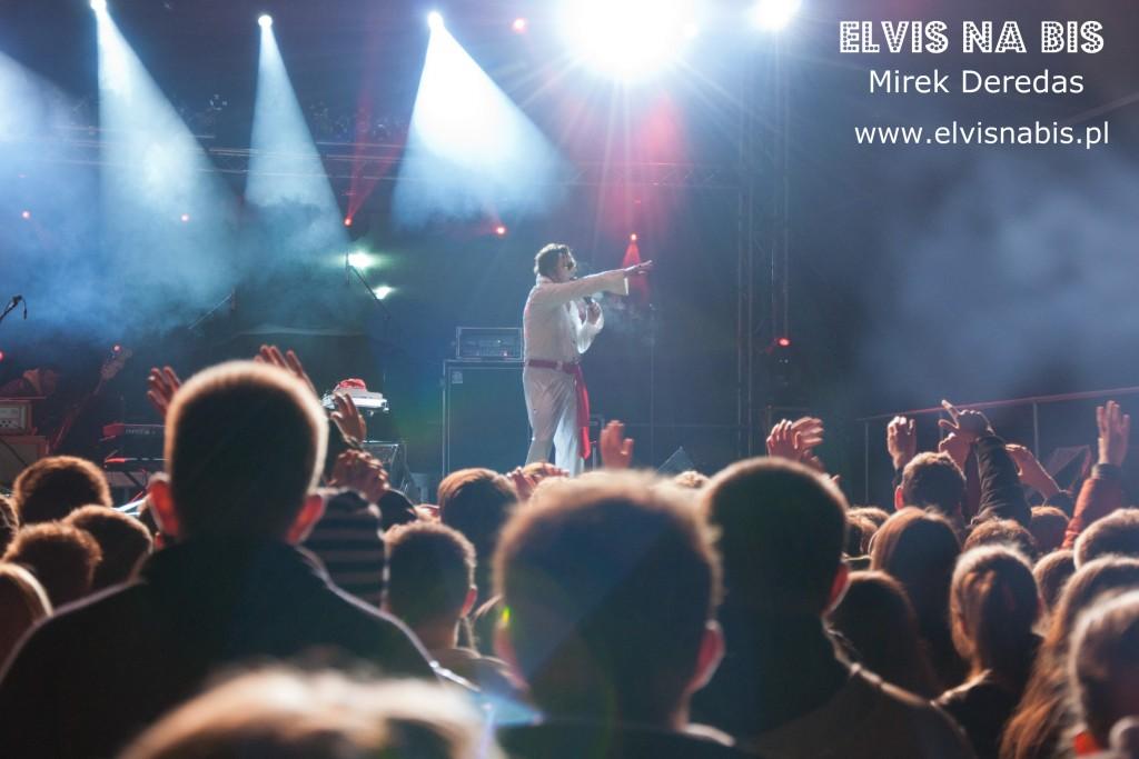 Elvis na bis